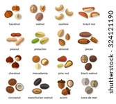 Nuts Flat Icons Set With...
