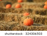 soft focus with some pumpkin... | Shutterstock . vector #324306503