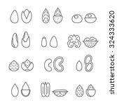 nuts and seeds vector set.... | Shutterstock .eps vector #324333620