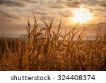 beautiful view of sunrise over... | Shutterstock . vector #324408374