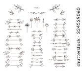 set of plant frames  dividers ... | Shutterstock . vector #324539060