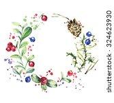 wreath with wild berries... | Shutterstock . vector #324623930