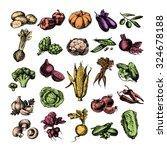 hand drawn sketch vegetable set....   Shutterstock .eps vector #324678188