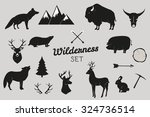 hand drawn wilderness animals... | Shutterstock .eps vector #324736514