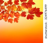 fall  autumn  leaves background....   Shutterstock . vector #324976499