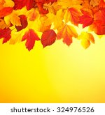 fall  autumn  leaves background....   Shutterstock . vector #324976526