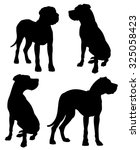 Stock vector great dane purebred dogs standing and sitting vector silhouettes isolated 325058423