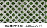Seamless Tiled Texture Of Gree...