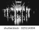 employees talking in corridor... | Shutterstock . vector #325114304
