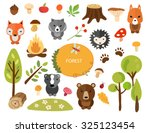 set of cute forest animals and... | Shutterstock . vector #325123454