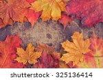 Bright Autumn Leaves Arranged...