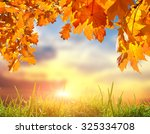 fallen leaves in autumn forest... | Shutterstock . vector #325334708