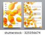 set of brochure  poster... | Shutterstock .eps vector #325356674