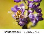A Honey Bee In Flight Gathers...
