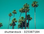 palm trees against sky | Shutterstock . vector #325387184