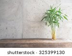 Vase Plant Decoration With...