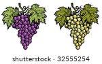Wine Grape   Color