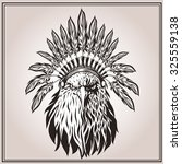 american eagle in ethnic indian ... | Shutterstock . vector #325559138