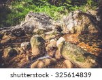 beautiful river streaming on... | Shutterstock . vector #325614839
