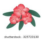 Beautiful Flower  Illustration...