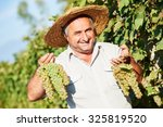 Happy Vintner With Grape Bunch...