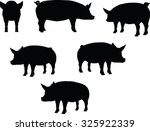 Vector Image  Pig Silhouette ...