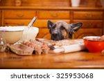 Big Shepherd Dog Stealing From...