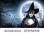 Halloween Witch Clairvoyant In...