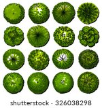 a set of trees   top view. use... | Shutterstock . vector #326038298
