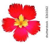 flower   Shutterstock . vector #3261062