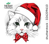 Christmas Poster With Cat...