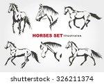 Horses. Vector Set.