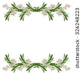 branch of cherry blossoms...   Shutterstock . vector #326248223