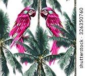 Parrots  Exotic Birds  Palm...