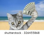 cat holding money | Shutterstock . vector #326455868
