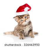 Stock photo baby tabby kitten in red christmas hat isolated on white background 326463950