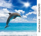 jumping dolphins  sunny ... | Shutterstock . vector #326483690