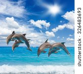 Jumping Dolphin  Seascape With...