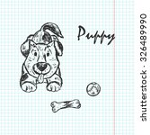 puppy. dog. hand drawn doodle... | Shutterstock .eps vector #326489990