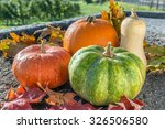 Autumn Harvest Of Various...
