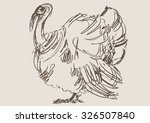 turkey hand draw sketch | Shutterstock .eps vector #326507840