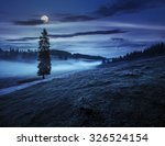fir tree in fog by the road through  hillside meadow in high mountains at night in full moon light - stock photo