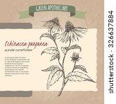 echinacea aka purple coneflower ... | Shutterstock .eps vector #326637884