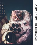 Stock photo beautiful cat astronaut elements of this image furnished by nasa 326796260