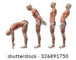 3d render of a medical figure... | Shutterstock . vector #326891750