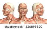 3d render of a medical figure... | Shutterstock . vector #326899520