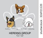 pet dog herding group pack 1 ... | Shutterstock .eps vector #326921120