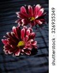 floating flowers | Shutterstock . vector #326935349
