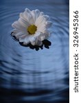 floating flowers | Shutterstock . vector #326945366