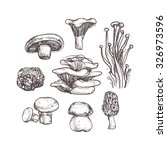 mushroom set on white background | Shutterstock .eps vector #326973596